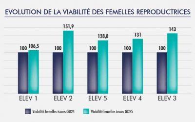 CONFIRMATION DE VIABILITE DE LA FEMELLE HYPLUS PS 19 ISSUE GD 25 : ESSAIS « TERRAIN »