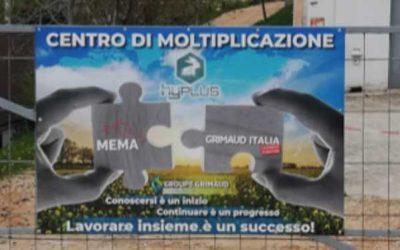 UN NOUVEAU CENTRE DE MULTIPLICATION EN ITALIE